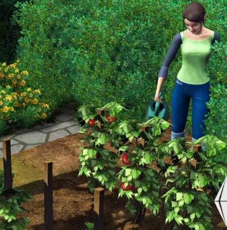 gardening sims 3